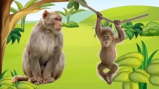 Dạy bé học các con vật|Em tập tiếng kêu và nói tên động vật bằng tiếng việt |Dạy trẻ thông minh sớm