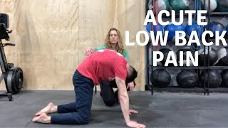 Have Acute Low Back Pain? 5 Exercises to Reduce your Back Pain