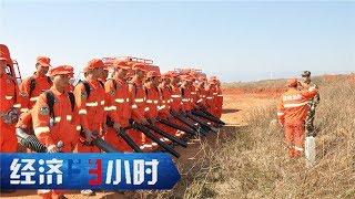 《经济半小时》 20190515 壮丽70年 奋斗新时代 森林里的绿色卫士| CCTV财经