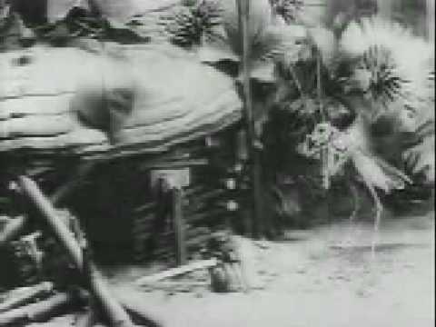 Старевич мультфильм 1913 год