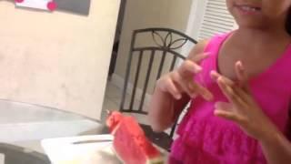 Watermelon Fruit Salad On A Stick