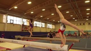 Первенство Санкт Петербурга по спортивной гимнастике (24.04.2018)