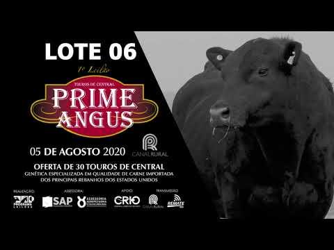 LOTE 06   BLACK OPAL TE877 SIRLOIN  Prod  Agência El Campo