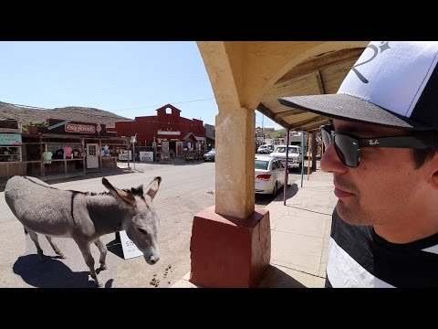 Epic Ghost Town full of Donkeys & Real life Cars Land on Route 66