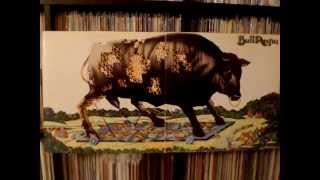 Bull Angus - Uncle Duggie