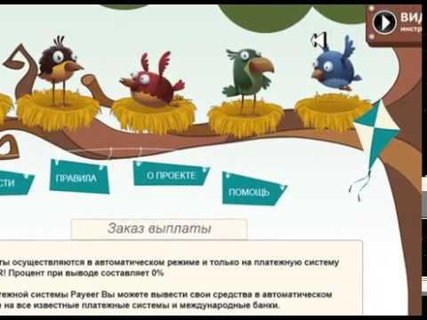 сайт заработка в интернете птицы