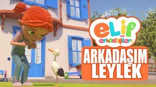 Elif ve Arkadaşları - Bölüm 6 - Arkadaşım Leylek - TRT Çocuk Çizgi Film