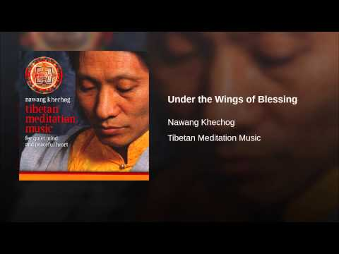 Under the Wings of Blessing