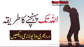 Allah Tak Pohnchne Ka Tareeqa || Hazrat Behlol Dana r.a || Heart Touching Quotes || Silent Message