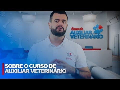 Curso de Auxiliar de Veterinário e Pet Shop - Projeta Santo Amaro de YouTube · Duração:  3 minutos 2 segundos