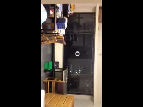 University Of Oregon Dorm Part 46
