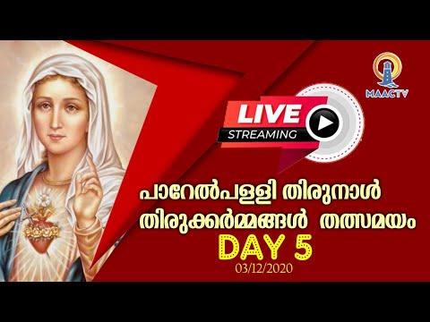 പാറേൽപള്ളി തിരുനാൾ  തിരുക്കർമ്മങ്ങൾ | DAY 5 | തത്സമയം|MAACTV