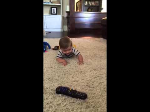 Sheppard learning to crawl
