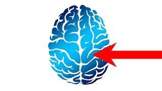Do Brain Training apps really Work?