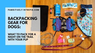 Backpacking with Dogs: Wнat to pack and who carries it.