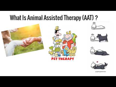 Animal Assisted Therapy in Nevada- An Exploration