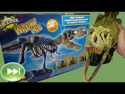Building a T-Rex Skeleton Model Kit in Time Lapse