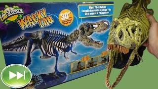 Building a T-Rex Skeleton Model Kit in Time Lapse