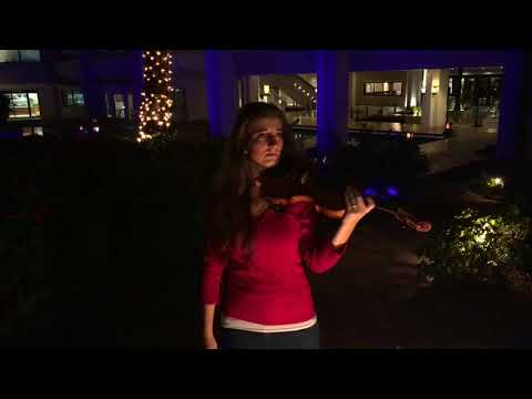 Mary Did You Know Violin   12 Days of Christmas