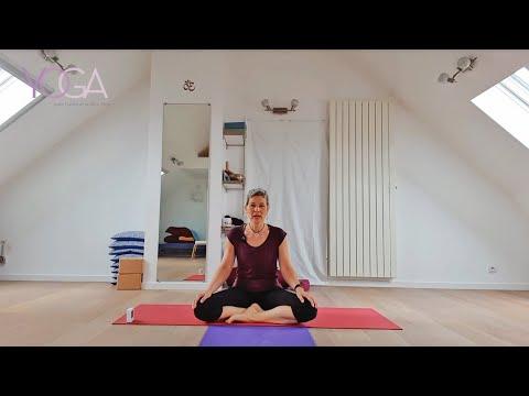 Download J3 JOURNÉES DU YOGA 2021_ Pratique du Hatha Yoga avec Virginie Zajac