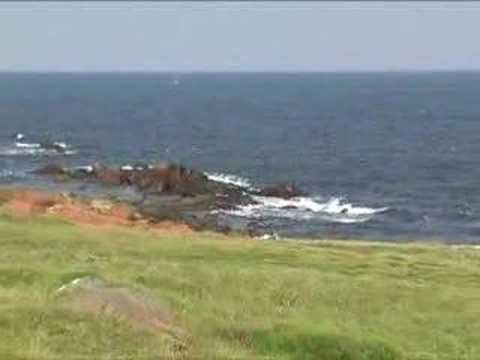 Punta colorada en Uruguay