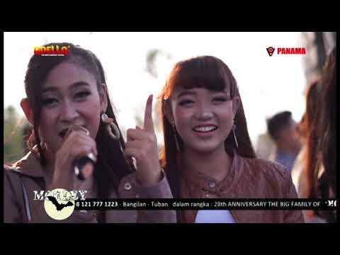 sayang2 - all artis - adella live sambogunung