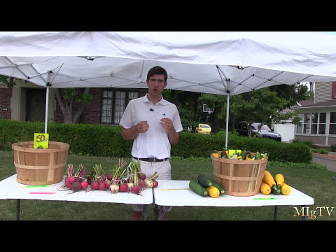 How to Make Money With Your Garden - Produce Stand vs. Farmers Market