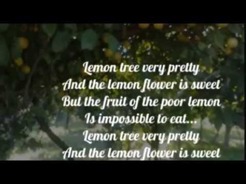 THE BROTHERS FOUR - LEMON TREE