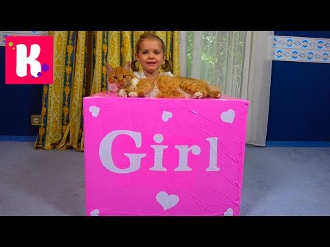 видео: Катя и кошечка Мурка открывают большой сюрприз в коробке для девочек / Кролик и граммофон для кошек