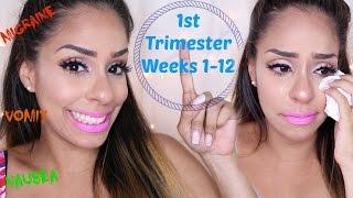 First Trimester Pregnancy Vlog | Weeks 1-12