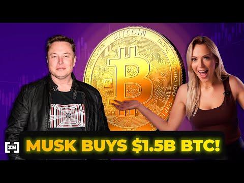 Elon Musk's Bitcoin Pump: Investing or Gambling?