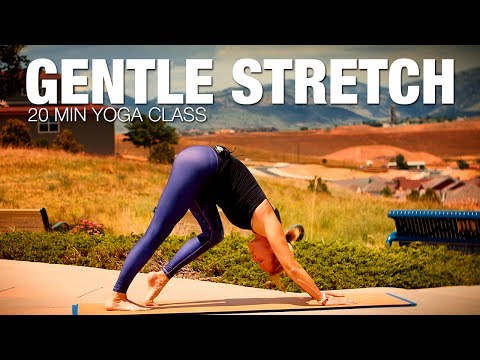 20 Min Gentle Stretch Yoga Class - Five Parks Yoga