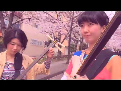 Shamisen Under The Cherry Blossoms II - Ki&Ki 輝&輝 津軽三味線: Now on iTunes!  Kikinomi | https://itunes.apple.com/us/album/kikinomi/id1234175064?app=itunes Kikinoki | https://itunes.apple.com/us/album/kikinoki/id1234168115?app=itunes  FILMED ON THIS: goo.gl/Ayb5Ce WITH THIS LENS: goo.gl/ohHsG6 AND THIS PHONE: http://amzn.to/2skRP4e  iTunes Japan | https://itun.es/jp/Gbp9ib  ----------------------------------------------------------------------  The Tsugaru Shamisen Girls KiKi are at it for a second year in a row! A beautiful day with Shamisen Under the Cherry Blossoms (Sakura)  Want more shamisen?  Instagram: https://www.instagram.com/tokyo_one/  http://kiki-teruteru.jimdo.com/  Plus A little behind the scenes https://www.youtube.com/TokyoLens?sub_confirmation=1 http://youtu.be/wGsFtRYLjRY  -------------