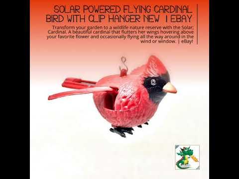 Solar Powered Flying Cardinal Bird with Clip Hanger New  | eBay