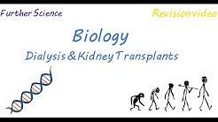 hqdefault - Dialysis And Transplantation Journal