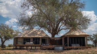 Zimbabwe 2019 Safari with African Bush Camps // Ma...