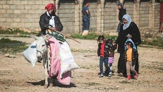 Иракская армия готовится захватить аэропорт в Мосуле (новости)