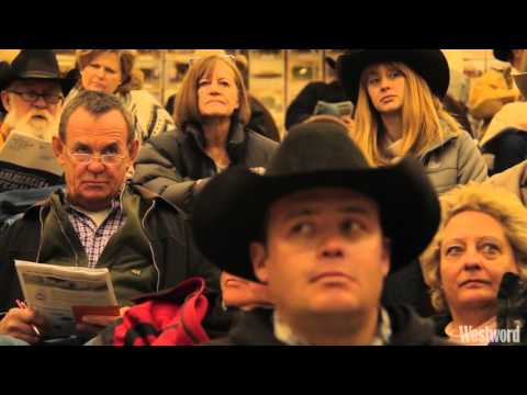 Inside The Fast-Talking World Of A Stock Show Auctioneer
