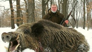 Wild Boar Hunting- Arizona Wild Boar Hunting