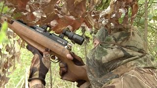 The Airgun Show – Crow Hunting with Decoys, plus Field Target Ace Nick Jenkinson on Pellet Selection