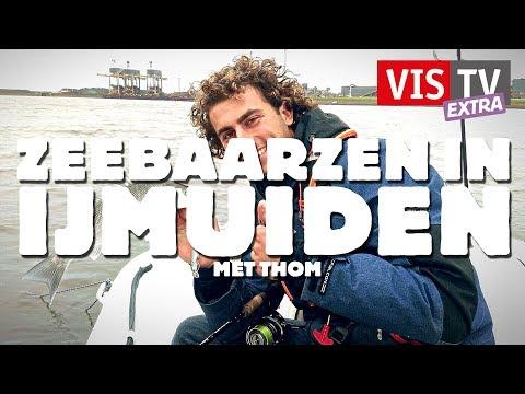 VisTV Extra #38 - Zeebaarzen in IJmuiden met Thom