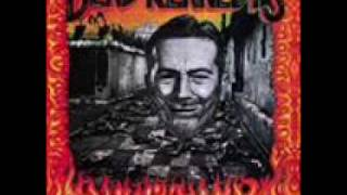 Dead Kennedys-Too Drunk To Fuck w/lyrics