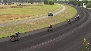 Vidéo de la course PMU PRIX CAMILLE LEPECQ