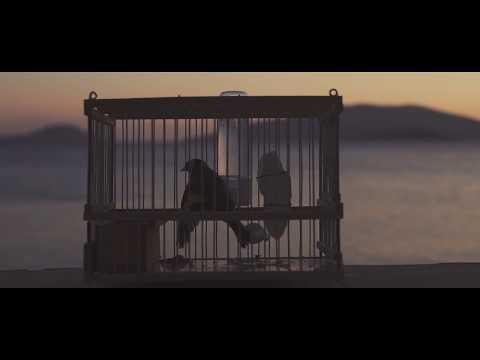 Ζωγράφος x Wise - Φλόγα ψυχρή  συμμ. Θοδωρής Καρέλλας (Official Video)