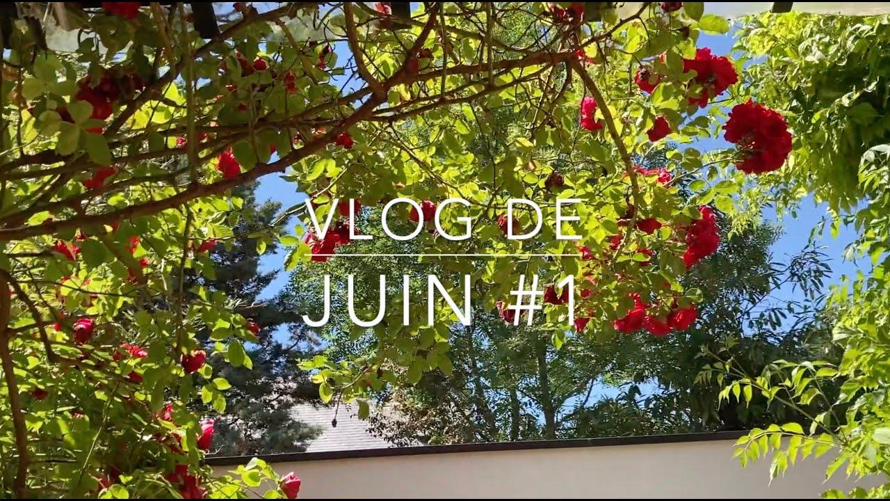 Dans l'atelier d'Eve - vlog de juin #1