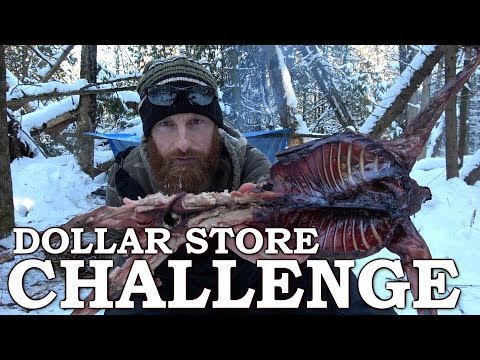 DOLLAR STORE SURVIVAL CHALLENGE in the FOREST | BUSHCRAFT Shelter  with Wild RABBIT