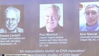 Лауреаты Нобелевки по химии открыли путь к лечению рака