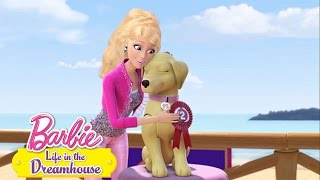 Going To The Dogs | Life In The Dreamhouse | Barbie