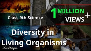Diversity in Living Organisms : CBSE Class 9 IX Science thumbnail