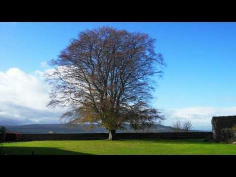 Peter Rudenko: If | Classical Piano Music | Free Royalty Free Music